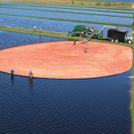 Aerial view of corralled cranberries